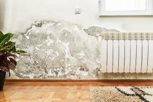 הסכנות ברטיבות בקיר